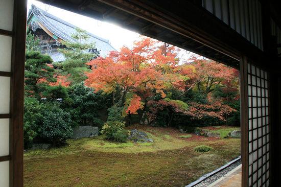 Seiryoji200711193