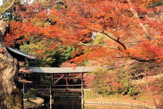 Kyoto200712105_2