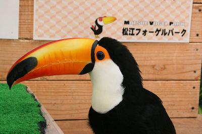 Ohashi200702243