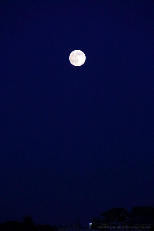 Moon20081113_2