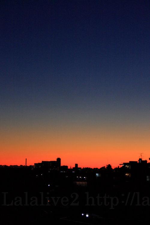 Dawn20081120
