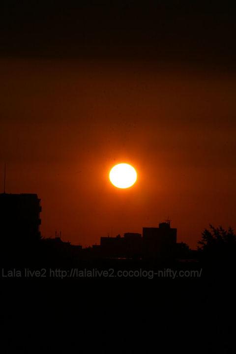 Sun20090815_2