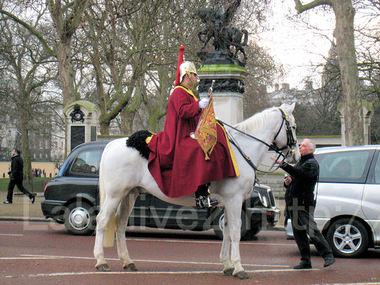 Buckingham201002196