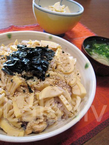 Takenoko20100502