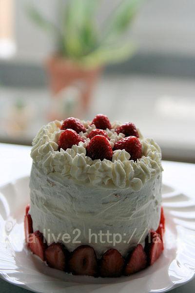 Cake201005151_4