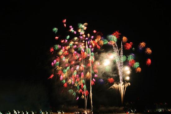Fireworks201008146