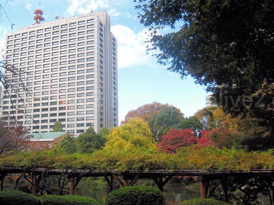Hibiya20101123