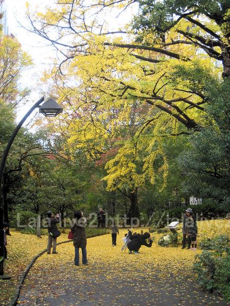 Hibiya201011232