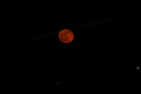 Redmoon201012224_2