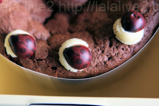 Gateauchocolat3