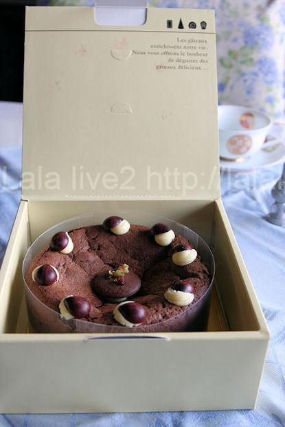 Gateauchocolat5