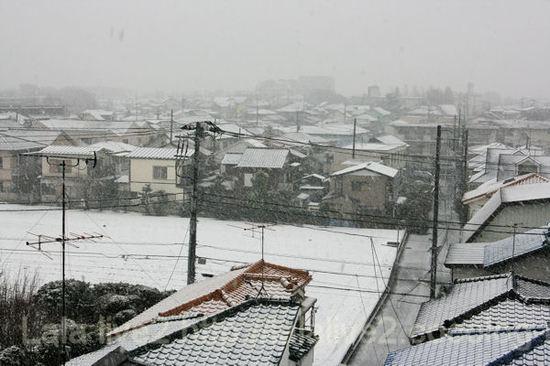 Snow20110211