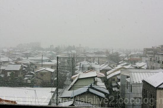 Snow201102111