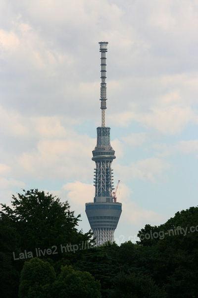 Skytree20110906