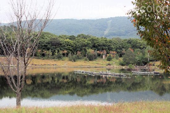 Rejina20110926_3
