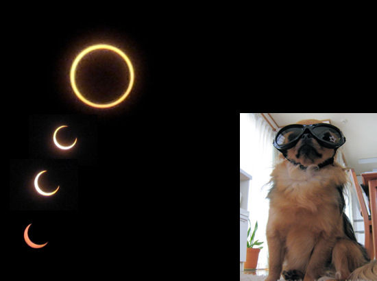 Annular_solar_eclipsemay_21_2012