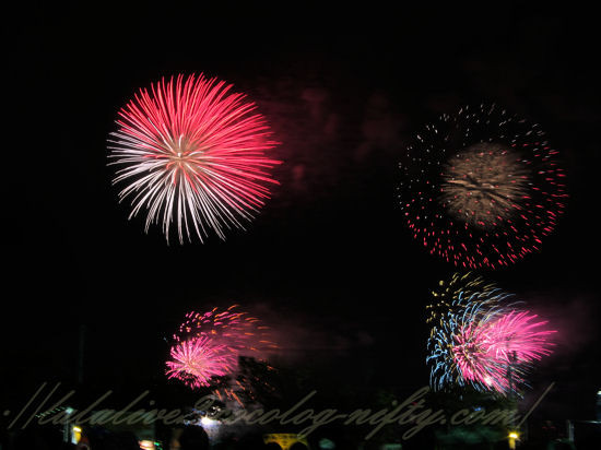 Fireworks2012081111