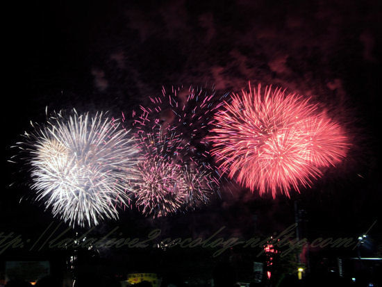 Fireworks201208113
