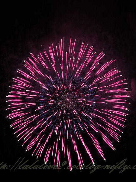 Fireworks201208115