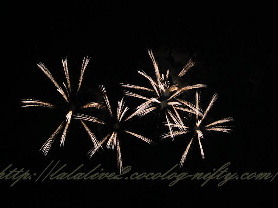 Fireworks201208119_2