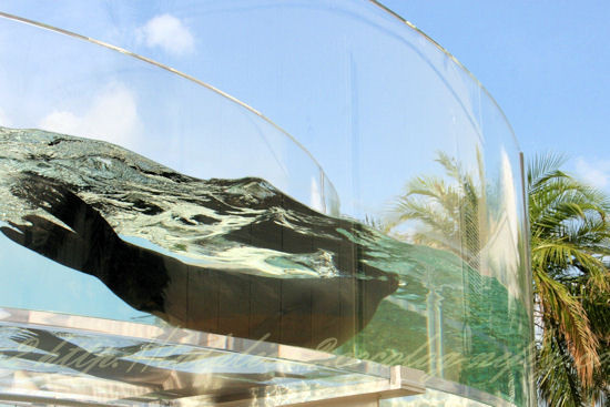Aquaring201209073