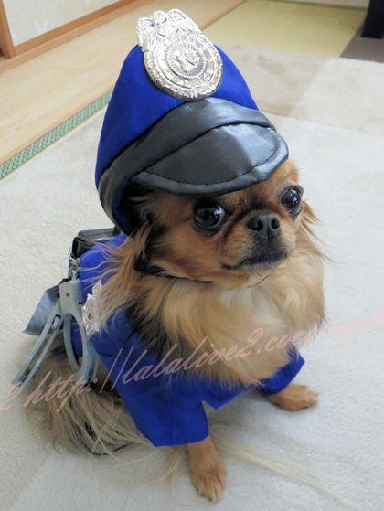 Policemaru