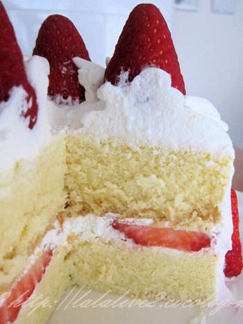 Cake201305151_2