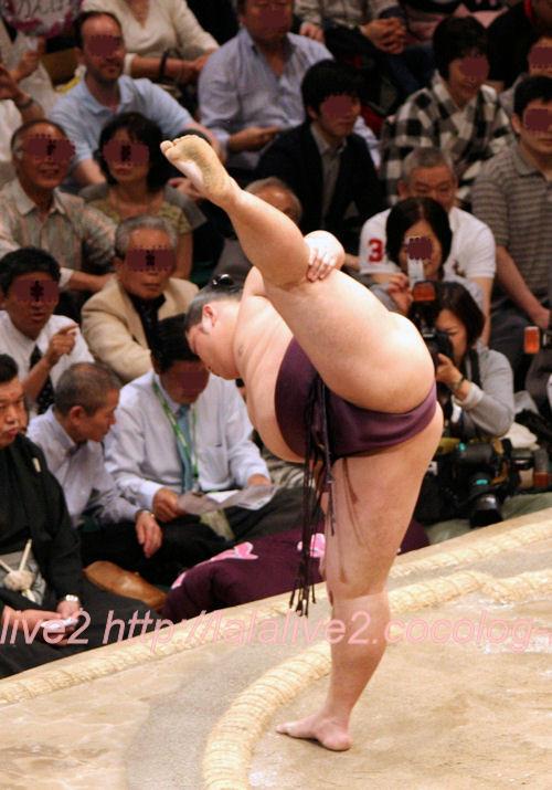 Sumo201405182