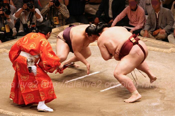 Sumo201405184