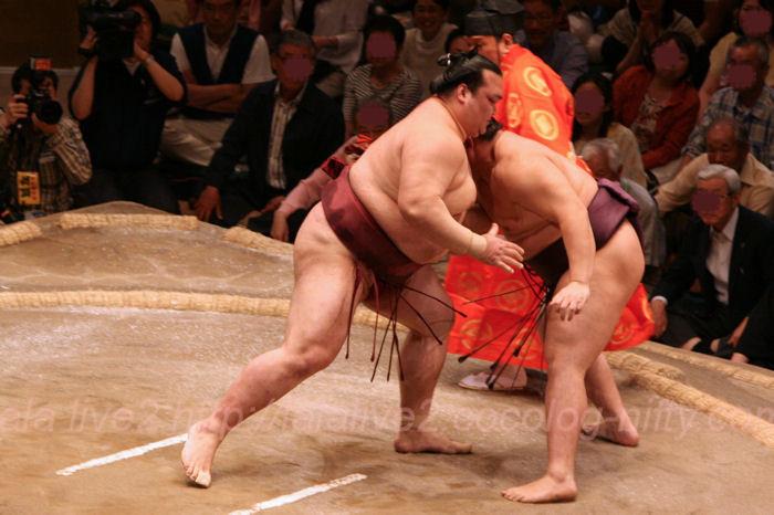 Sumo201405188