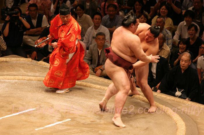 Sumo2014051881