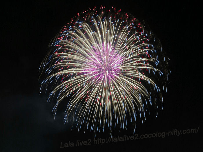 Itabashifireworks201408023