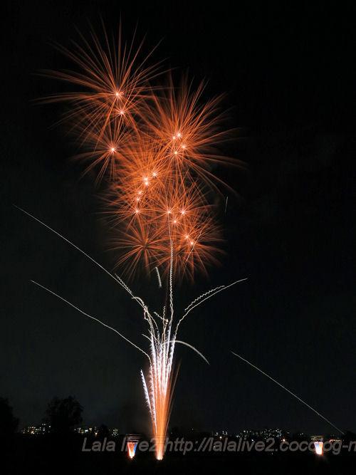 Itabashifireworks201408024