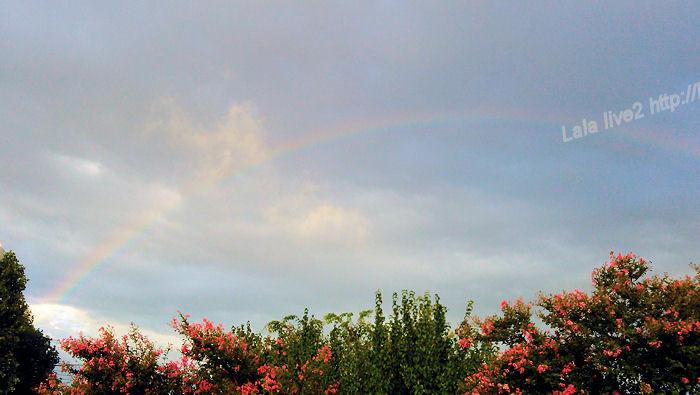 Rainbow201408161