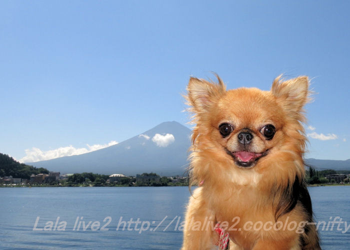Fuji20140909