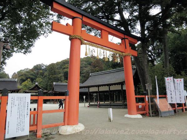 Kamigamo20150217
