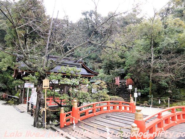 Kamigamo201502174