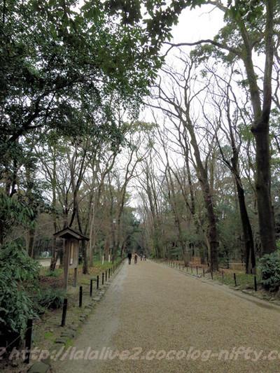 Shimogamo20150217