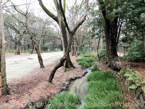 Shimogamo201502171