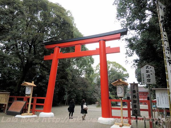 Shimogamo201502172
