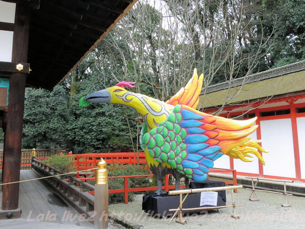 Shimogamo201502177