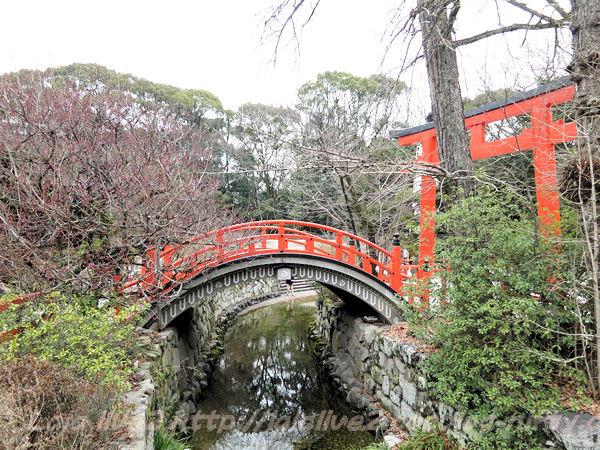 Shimogamo201502178