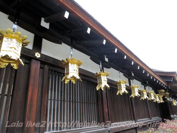 Shimogamo2015021711