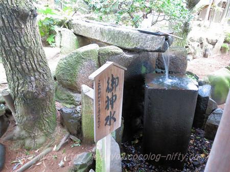 Shibamata41