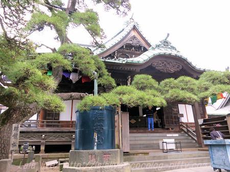 Shibamata53_2