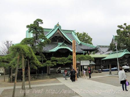 Shibamata67