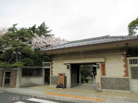 Shibamata31