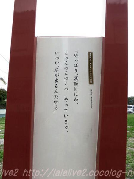 Shibamata5