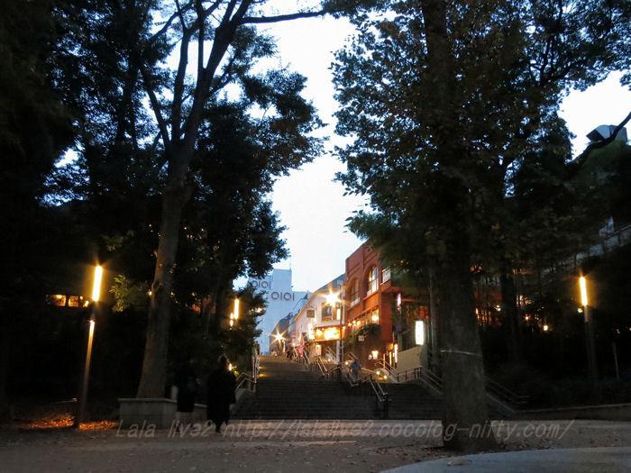 Inokashira201511171