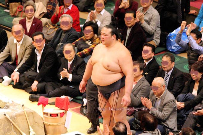 Hatsubasyo2017012212